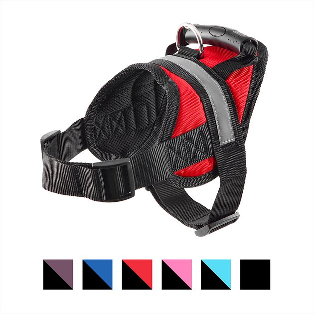 big red harness instructions